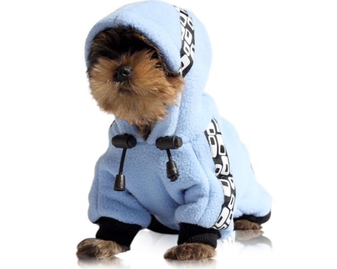 Зимняя одежда для йорка выкройка